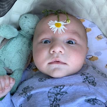 James, Flower, Turtle, Love, Babyboy, Surrogacy